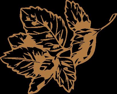 leaf(1)